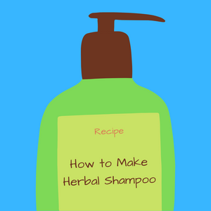 How to make Soapwort Shampoo