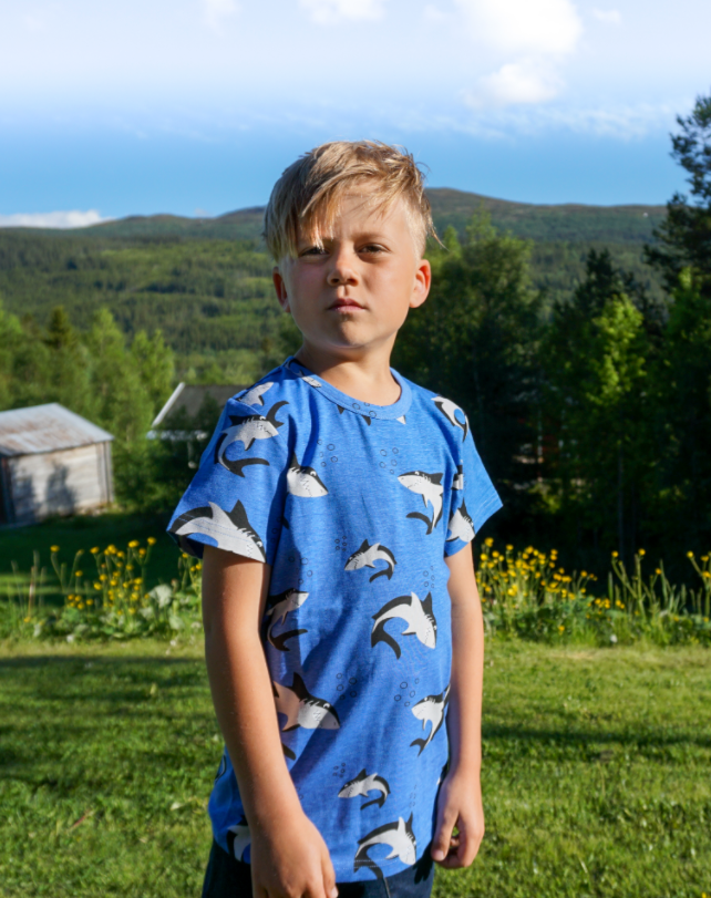 Larry the shark økologisk jersey - Jny Kids