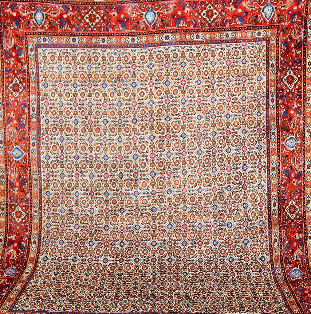 Herati Design Persian Rug