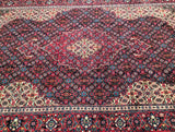 Fish_design_Persian_rug_Sydney
