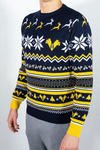 XMAS JUMPER HELLAS VERONA - KID