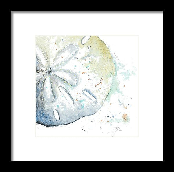 Water Sand Dollar Framed Print by Patricia Pinto