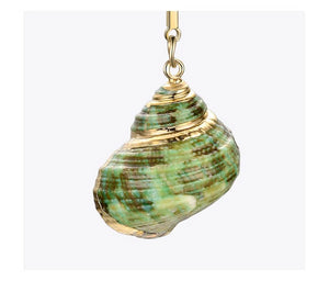 Boho Natural Conch Shell