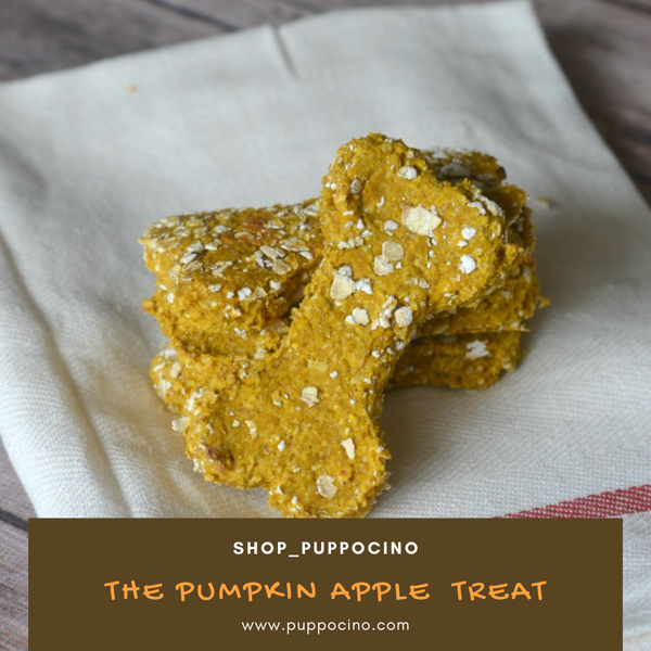 EASY TO MAKE: PUMPKIN APPLE DOG TREATS