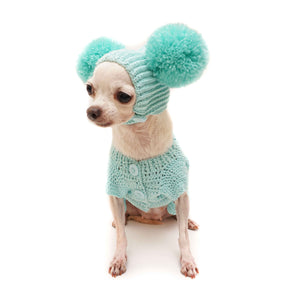 Crochet Bunny 2 Piece Dog Outfit - Light Teal