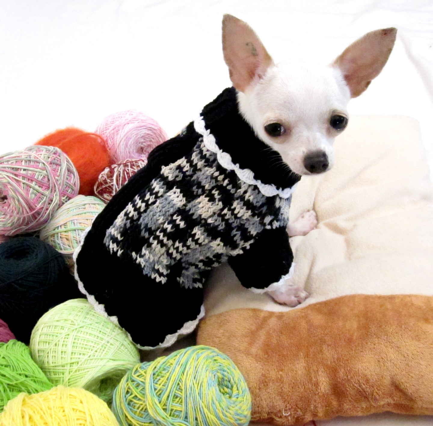 Black and White Knitted Dog Sweater Dress