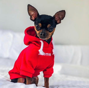 Basic Super Hoodie - Red
