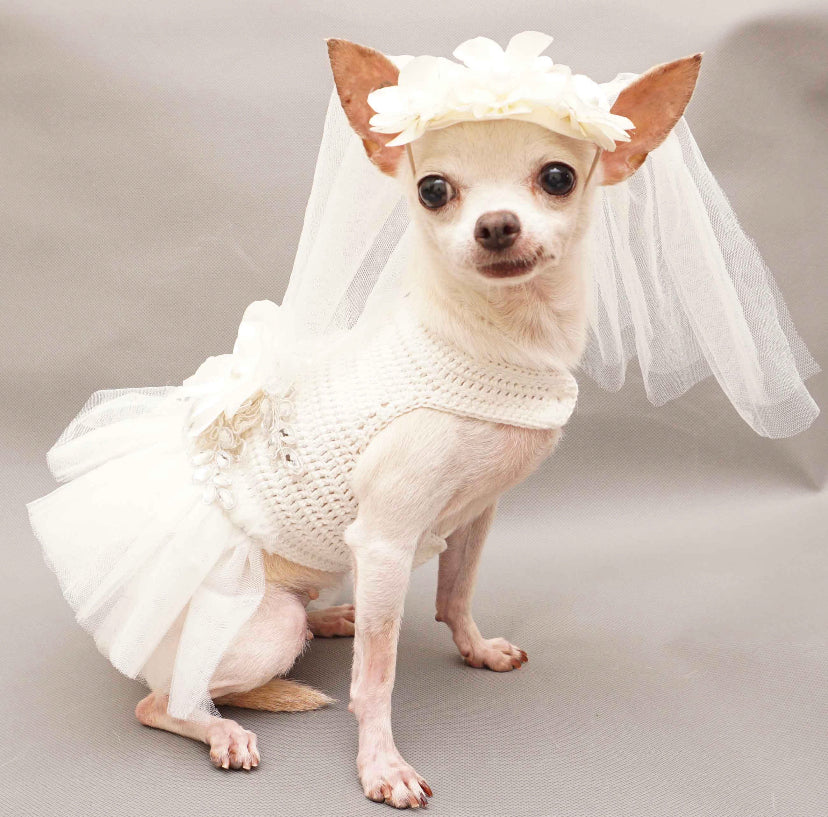 Bridal Dress for Dog Wedding Occasion with Veil