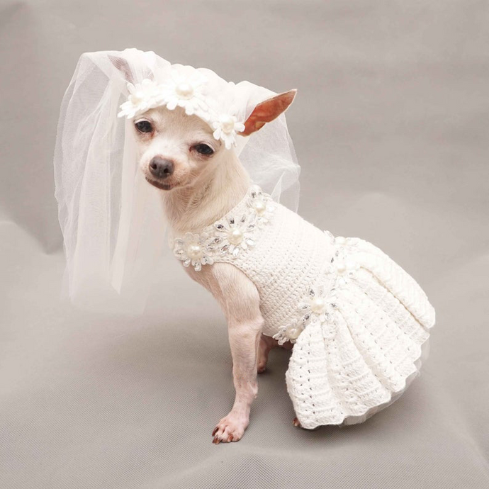 Simple Bridal Dress for Dog Wedding Occasion with Veil