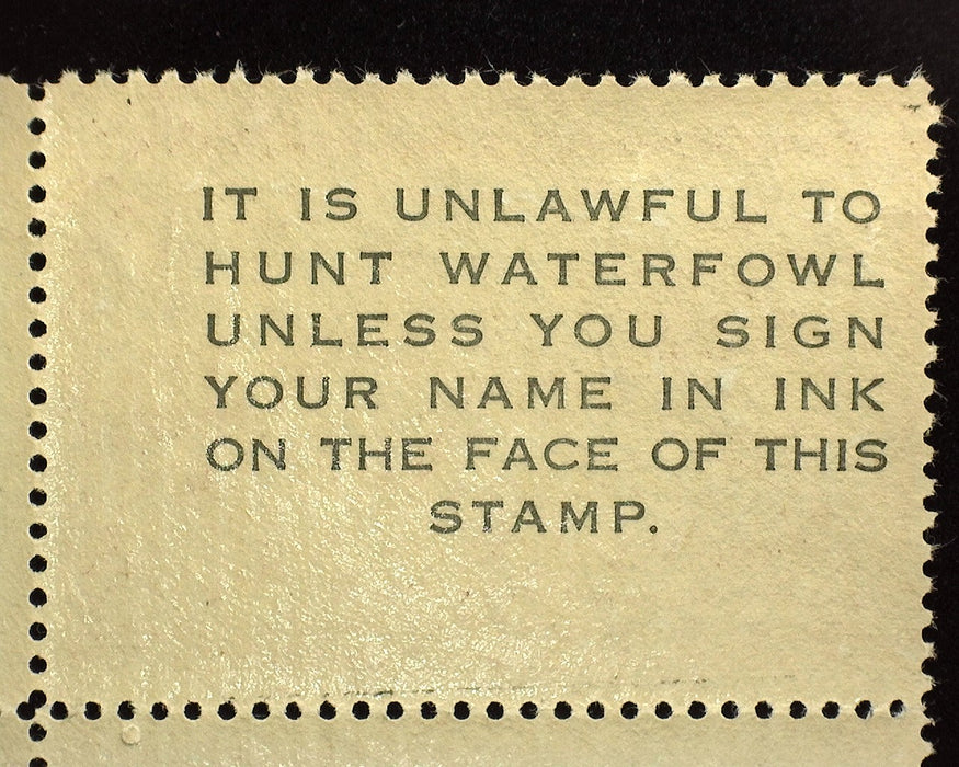 #RW20 Mint Choice corner margin stamp. Vf/Xf NH