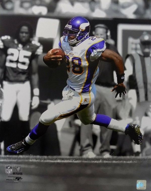 Adrian Peterson Unsigned 16x20 Minnesota Vikings Photofile Spotlight Photo - Sports Integrity