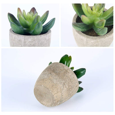 GoMaihe Artificial Succulents Plants Set of 6