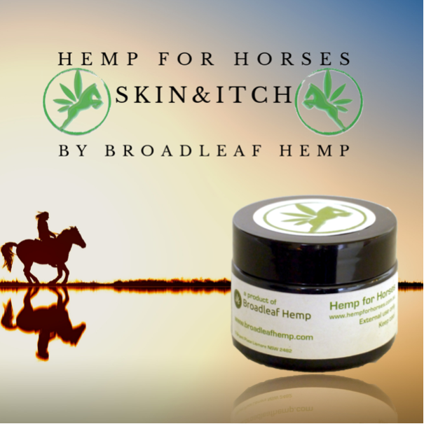 Hemp Horse Itch, Skin & Hair Cream (Bees Wax, Turmeric & Lemon Myrtle) - 60 grams