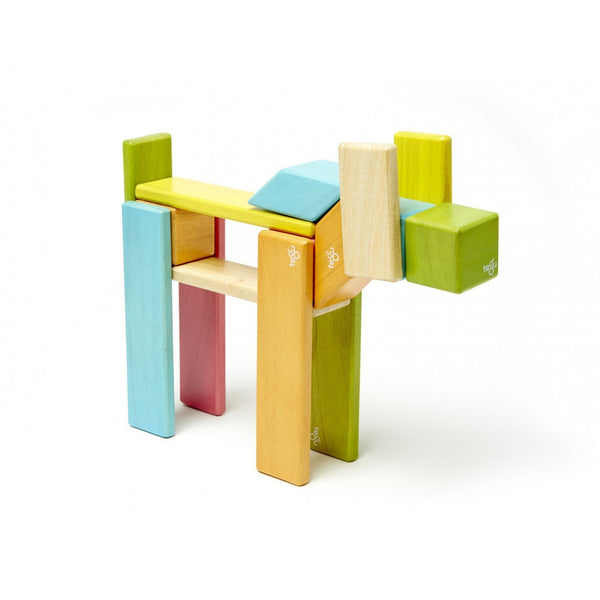 Tegu 14 Piece Set