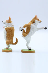 Yoga Dance Dog Set