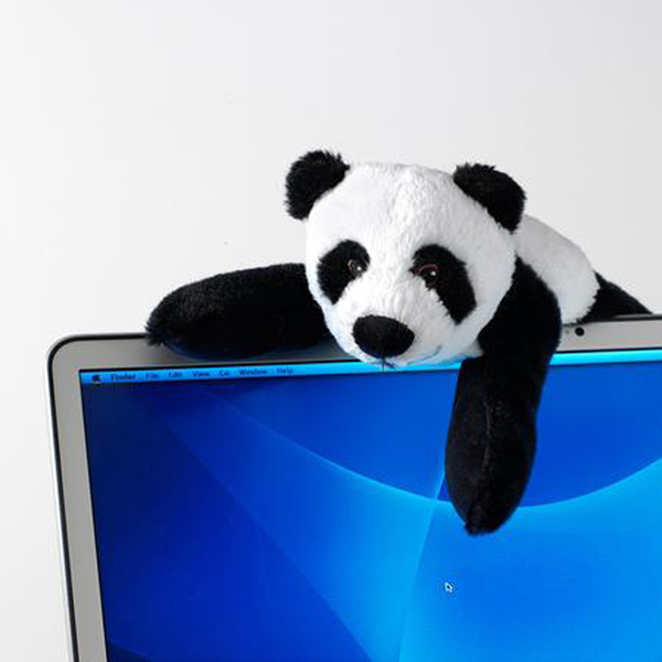 Panda Novelty Screen Wipe
