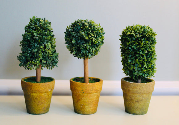 Potted Faux Boxwood Topiary