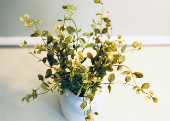 Faux Greenery Spray- Pimpernel Bush