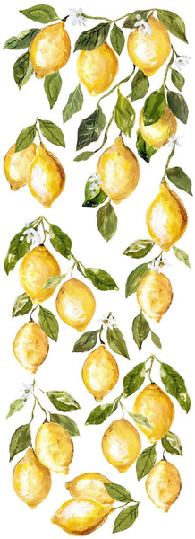 Lemon Drops 12 x 33 Decor Transfer