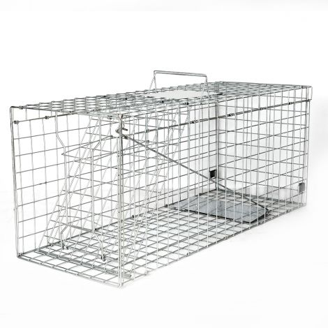 Cat trap cage