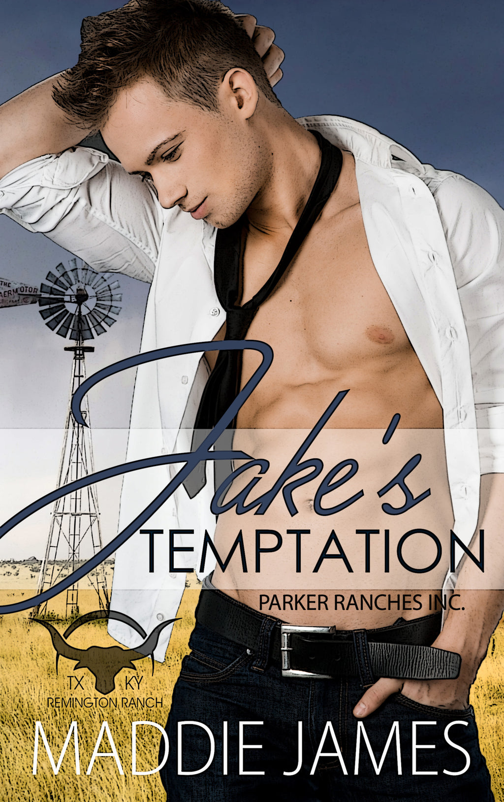 Jake's Temptation (Parker Ranches, Inc. - Remington Ranch, Texas) Book 3