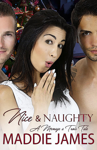 Not This Christmas (Harbor Falls Romance)