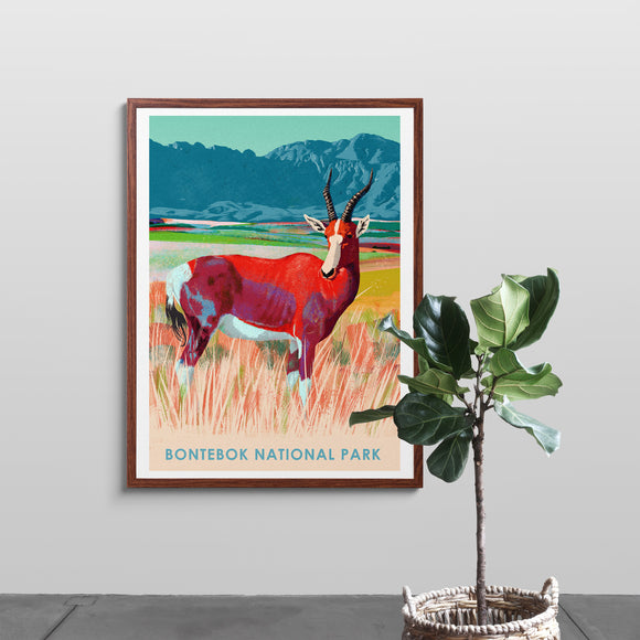 Bontebok National Park Poster
