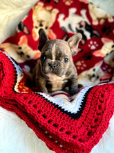 Load image into Gallery viewer, fancybullcreations puppy blanket
