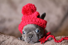 Load image into Gallery viewer, red puppy hat