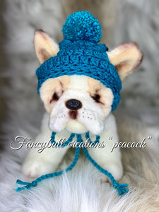 peacock color puppy hat