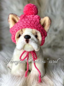 coral hat french bulldog puppy
