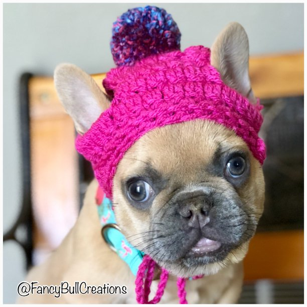French Bulldog pom pom beanie, various colors