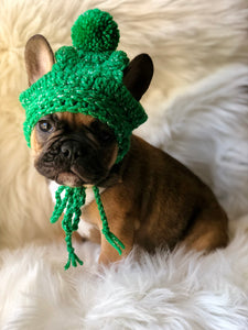 French Bulldog pup pom pom beanie