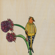 Goldfinch and Thistle Print by Katherine Homes