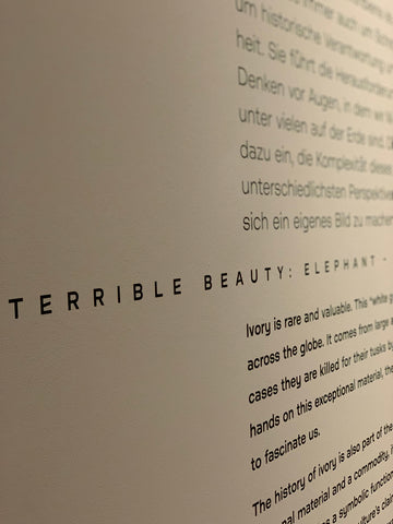 Introduction to terrible beauty exhibition