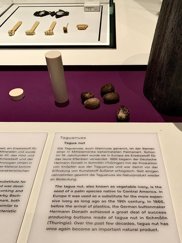 Tagua Nut beads exhibited at the Humboldt Forum Berlin