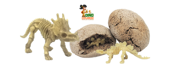 Double Dino Fossils