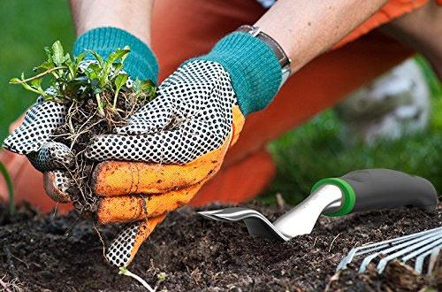 Best landscaping and gardening tools you've been looking for - Nurserylive