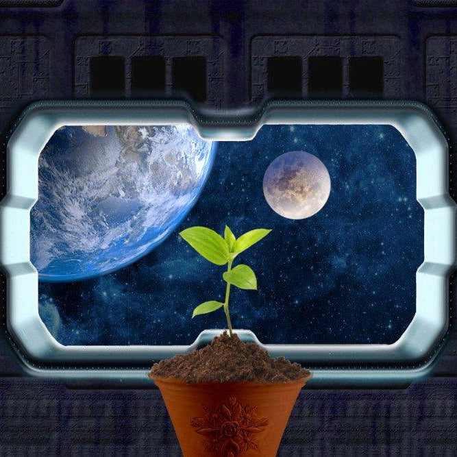Have you ever wondered what plants grow in space? - Nurserylive