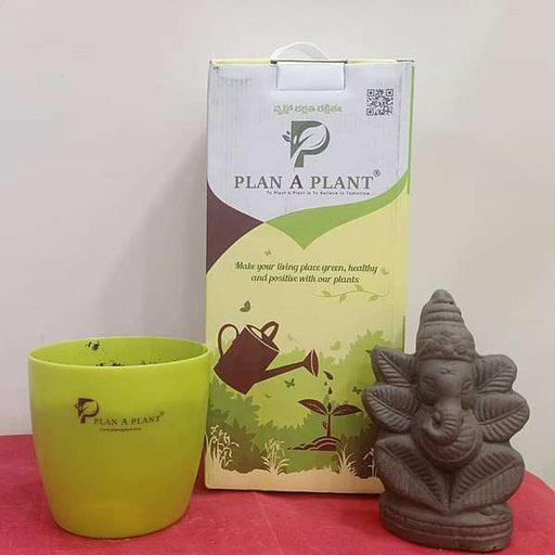 Eco Friendly Plantable Clay Ganesh Murti - Nurserylive