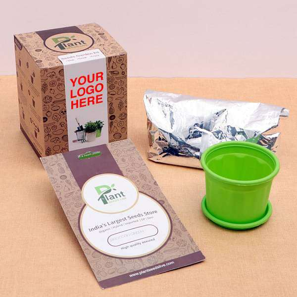 Healthy Coriander Seeds garden Kit - Gift Pack