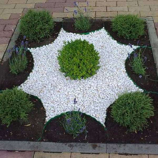 Decor Garden with Stone - Nurserylive