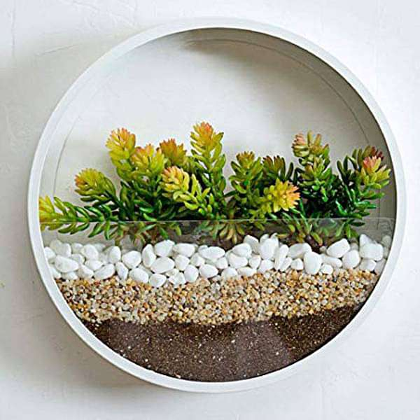 Pebbles to Beautify Wall Terrarium