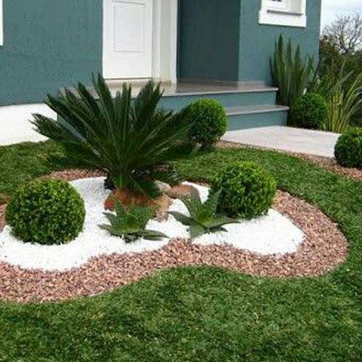 Wonderful Garden Designs with Pebbles - Nurserylive