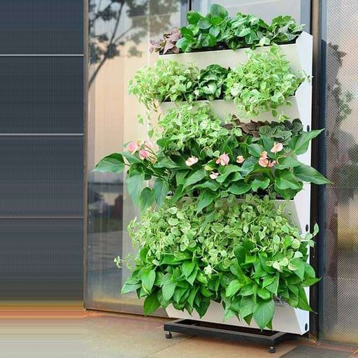 22.4 inch (57 cm) Hydrofall Self Watering Vertical Garden Planter and Wall Rack Kit (Ivory) - Nurserylive