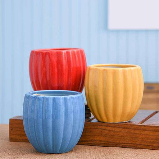 3.1 inch (8 cm) Vertical Ridges Pattern Round Ceramic Pots - Pack of Three - Nurserylive