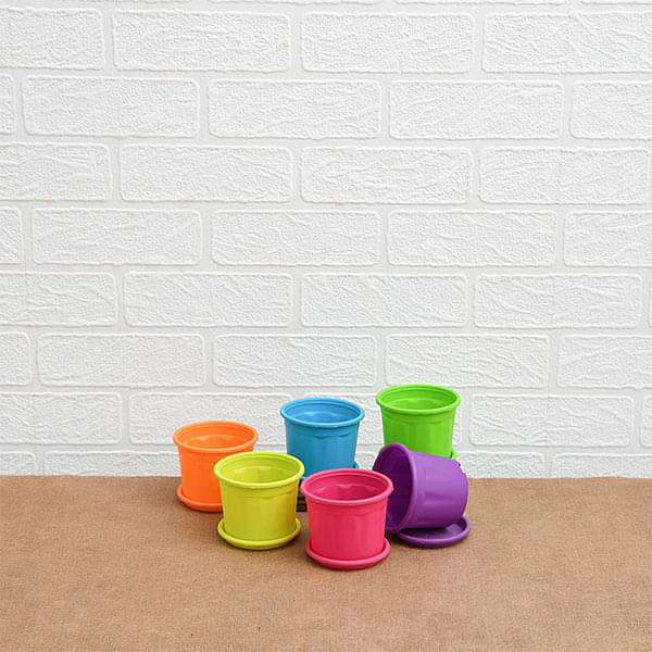3 inch (8 cm) Grower Round Plastic Pots with Plates (Mix Color) - Pack of Six