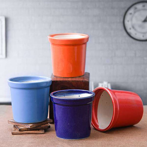4.1 inch (10 cm) Round Ceramic Pots with Rim - Pack of Four - Nurserylive