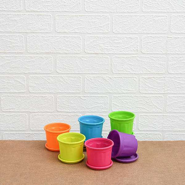 4 inch (10 cm) Grower Round Plastic Pots with Plates (Mix Color) - Pack of Six - Nurserylive
