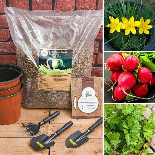 Grow Your Own Garden - Kids Gardening Kit - Nurserylive